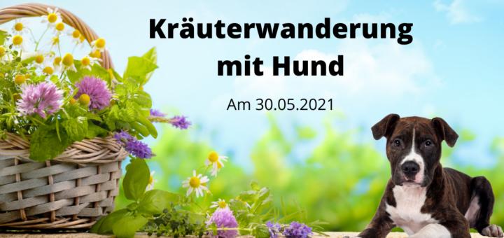 Kräuterwanderung Hund Kulmbach